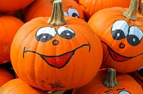pumpkins are full of potent antioxidants