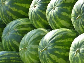 water melons are high in antioxidants