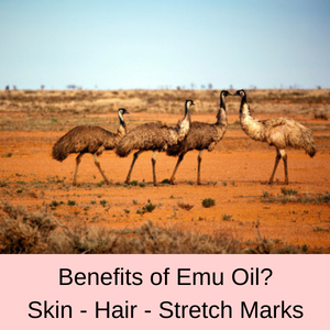 What are the Benefits of Emu Oil